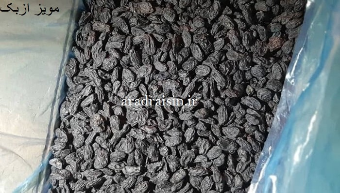 قیمت مویز ازبک