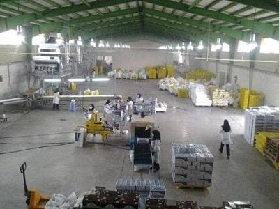 کارخانه تولید کشمش